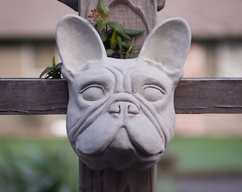 French Bulldog in Cement