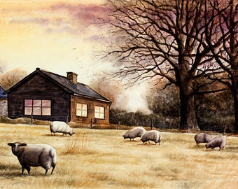 Sheep in sunset - print, watercolor, 13 X 18 cm, sheep, meadow, england, sunset, landscape, free shipping