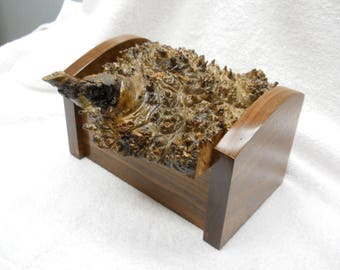 Red Elm Burl and walnut treasure box#323