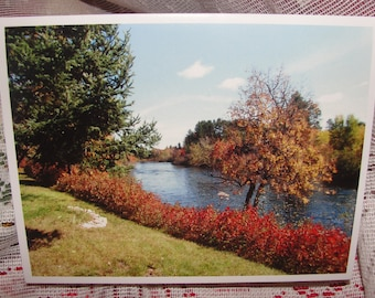Set of 5 - Fall Colors Scenic Notecards, Scenic Northwoods Wisconsin