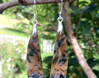 Bamboo Agate Earrings