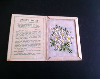 Vintage Kensitas Silk Flowers Cigarette Cards 1935 Ox Eye Daisy C medium size original silks and folders very good condition