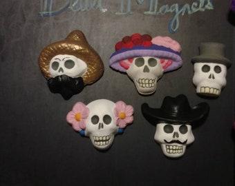 Set of 5 skull magnets