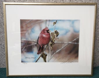 Mad Cardinal by Anthony J. Padgett circa 2000's #326/980, signed by artist