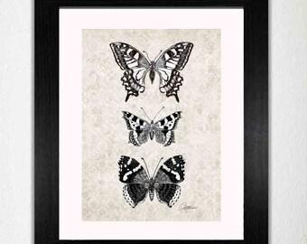 Monochrom Schmetterlinge Print Butterfly Schmetterling Kunst Dekor Schmetterling Bild Schmetterling Wandgestaltung - Originalgrafiken Schmetterling zum ausdrucken
