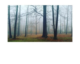 FOG & MIST photography Print on cover stock paper