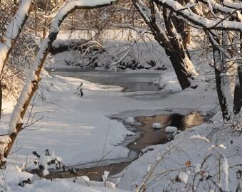 Winter Wonderland #1/ Fine Art Photo/ Wall Art/ Creek in the woods/ Winter Photo/