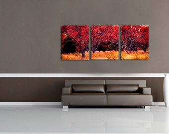 Fine Art Photography Print Set of 3 Wall Decor Collage, Landscape Oversized Wall Art -Red Orchard