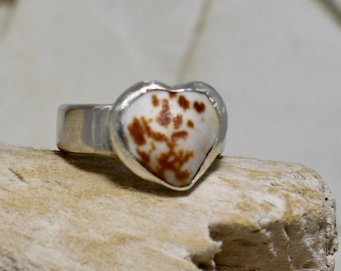Handmade Fine Silver Ring With a SS Bezel Cockle Shell Size 8
