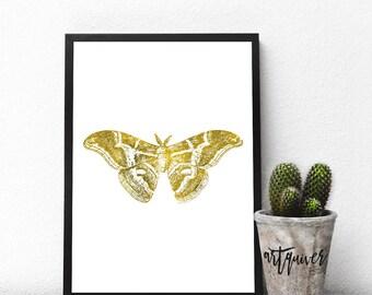 Insect Art, Bug Art, Moth, Moth Art, Poster, Trendy Wall Designs, large wall art, Trendy-art, Framed art, framed prints