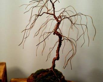 Copper wire bonsai willow