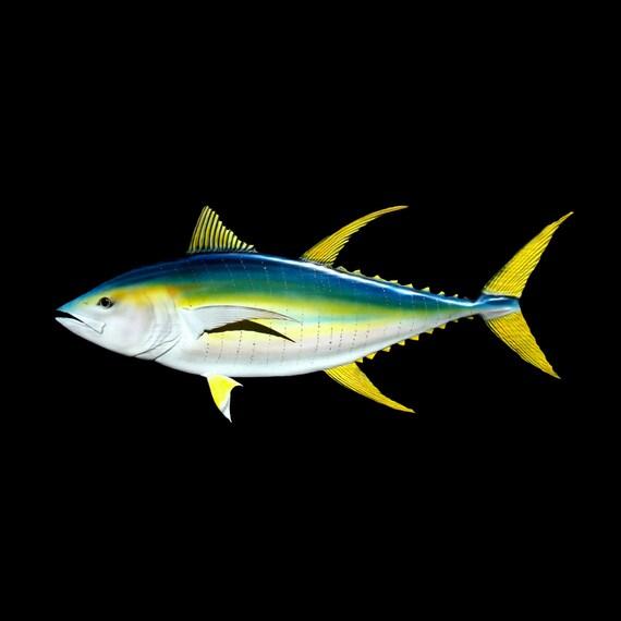 Yellowfin tuna fish wood carving 46 39 39 fish art for Ahi tuna fish