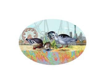 Gulf Coast Possum digital illustration print