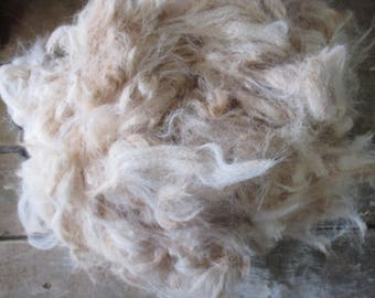 200g Raw Unwashed Alpaca Fleece in Ivory for Craft, Spinning and Stuffing -  2nd Quality