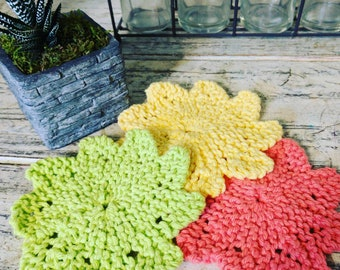 Almost lost dishcloth (set of 3)