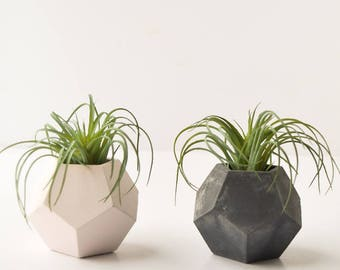 Small Decahedron Planter - Air Plant Planter - Succulent Planter - Concrete Planter - Modern Planter - Concrete Vessel - Air Plant Holder