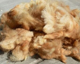 California Red Sheep Fiber - Raw, 29 ounces!
