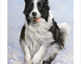 Border Collie Dog Portrait by award winning artist JOHN SILVER. Personally signed A4 or A3 size Print. BC004SP