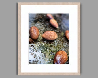 TOASTED ALMONDS - Framed Art Photography, Home Decor, Wall Art