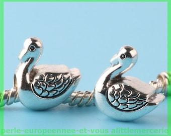 Pearl European N199 bird for bracelet charms