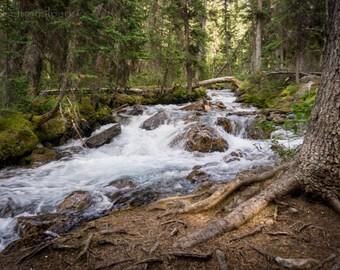 Waterfall Photography Print