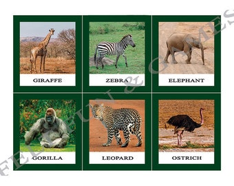 15 Animals of Africa, Montessori Learning Cards for combining with the world map of the continents, materials color coded Montessori