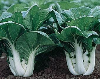 Cabbage PAK-CHOI seeds 3 g / cabbage seeds/ vegetable garden seeds