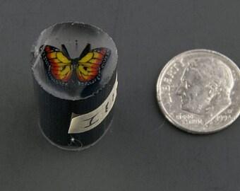Monarch Murrine Boro Cane 11 grams - 116 I