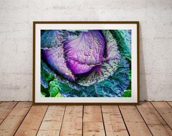 Kitchen Print - Fruit Still Life -  Cabbage - vegitable - Kitchen Wall Art - Fine Art Photography - Kitchen Decor - Kitchen-vegitable poster