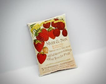 Vintage print strawberry sign pillow | Vintage Raspberry | Strawberry Advertisement