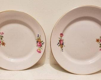 European Buffet Plates - Lot of 20 - Salad Plates - Dessert Plates - Bread Plates