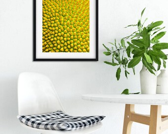 "Colourful Wall Art, Fruit Art Print, Citrus Print, Yellow Wall Art, Abstract Art, Jackfruit, Lemon Lime, Photography Print, ""Sweet Symmetry"""