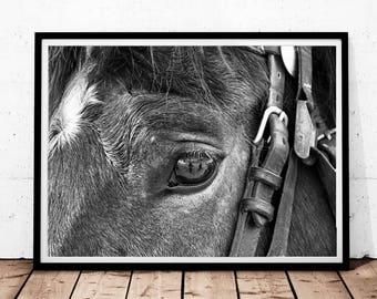 Horse Print, Horse Eye Photo, Black and White Photography, Digital Download, Home Decor Print, Scandinavian Art Digital Print, Horse Decor