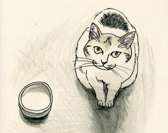 Cat original drawing - P028November2015