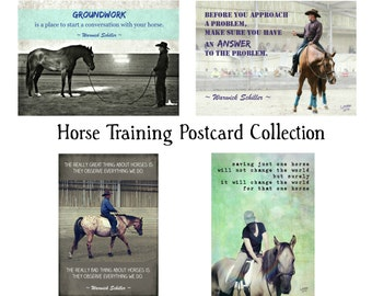 Horse Training Postcard Collection ~ Set of Four