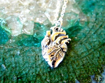 anatomical heart sterling silver necklace pendant
