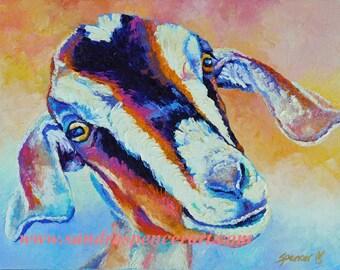 "SALE Original Nubian Pygmy Cross Goat Oil Painting 11""x14"""
