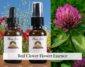 Red Clover Flower Essence, Dropper or Spray for Steadiness and Calm, especially in the Face of Emergency or Group Hysteria