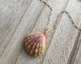 Bright Little Sunrise Shell Necklace