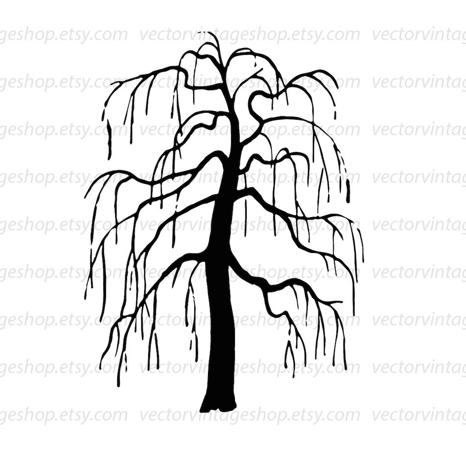 weeping willow tree vector clipart bare tree silhouette clip art rh etsystudio com willow tree clip art images willow tree clip art free