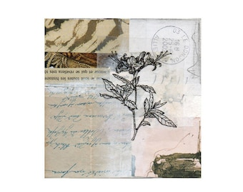 original collage, paper collage, cut and pasted papers, flora collage