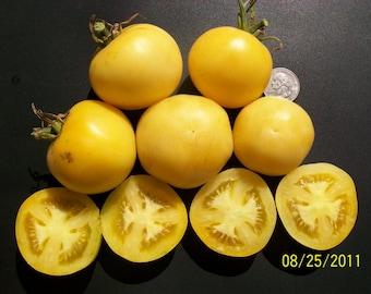 Heirloom Tomato- Wapsipinicon Peach- 80 day juicy- fuzzy- Indeterminate- 25 seeds