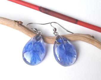 Pressed flower earrings, Botanical Resin Earrings, Real Flower Resin jewelry, Plant Earrings, Blue flowers, Teardrop earrings, mothers gift