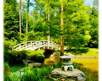 Iris Bridge Spring