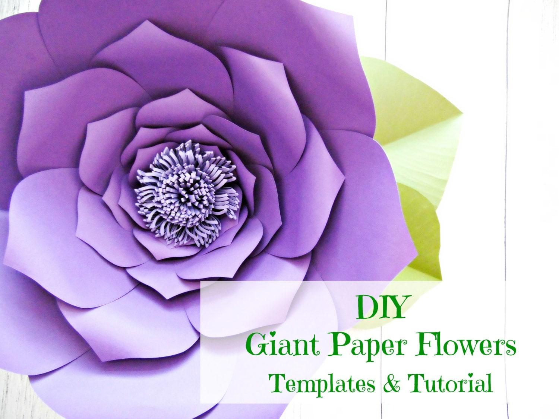 Giant Paper Flower Templates Tutorials Flower Wall Flower