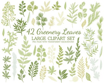 Greenery Clipart, Leaf ClipArt, Leaf, branch clip art, foliage clipart, leaves clip art, Greenery Clip Art, herbs clip art, branch clipart,
