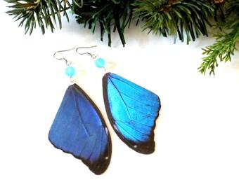 Blue Butterfly Earrings, Iridescent Butterfly Wing Earrings, Real Blue Morpho Butterfly Wing Earrings