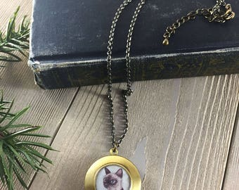 Cat Locket - Theo the Siamese cat painting, cat jewelry necklace, antique locket, kitty pendant necklace