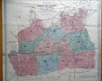 SURREY, Botanical map of County Flora, original antique map 1863