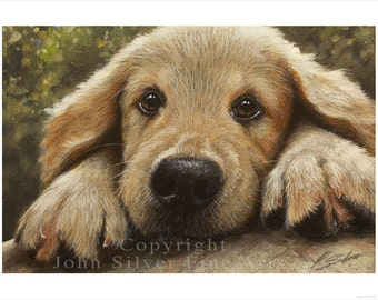 Golden Retriever Puppy Dog Portrait by award winning artist John Silver BA. Personally signed A4 or A3 size Print. GR337SP